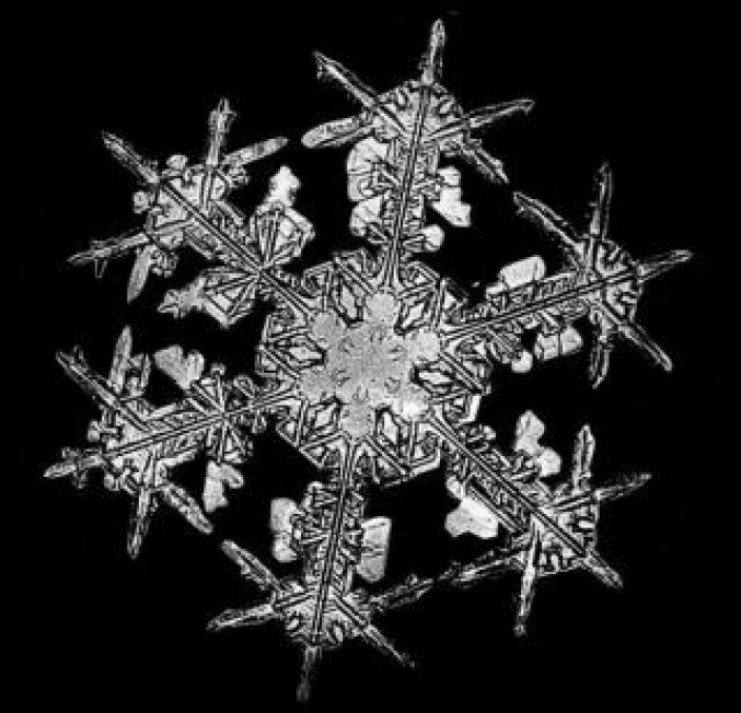 There are really 2 identical snowflakes